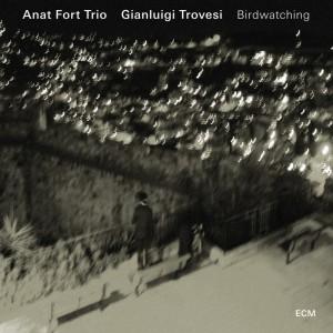 Anat Fort