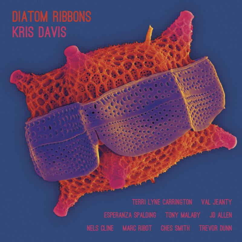 Kris Davis - Diatom Ribbons